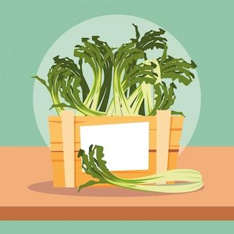 Légumes frais de céleri nature dans une caisse en bois