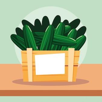Légumes frais de concombre dans une caisse en bois