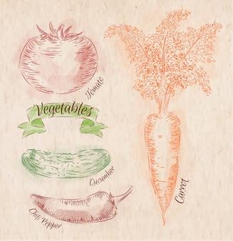 Légumes peints de différentes couleurs: carotte, tomate, tomates, piments rouges, poivrons