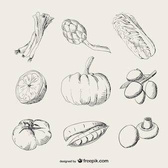 Légumes réalistes de tirage