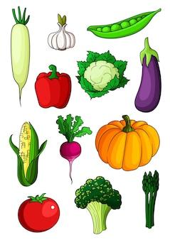 Légumes sains de dessin animé coloré