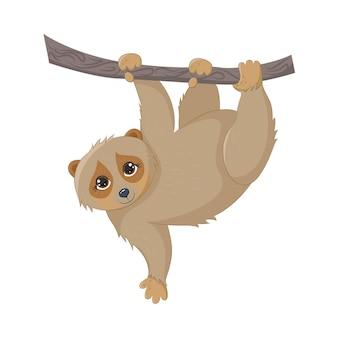 Lemur lori mignon, accroché à une branche, isolé sur fond blanc. animaux de la jungle. illustration vectorielle eps10.