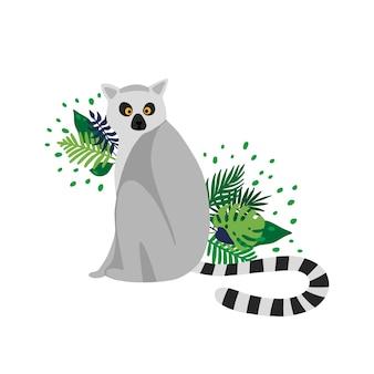 Lémurien isolé sur fond blanc