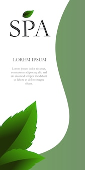 Lettrage spa avec des feuilles dans le coin. arrière-plan créatif avec des segments verts et blancs.