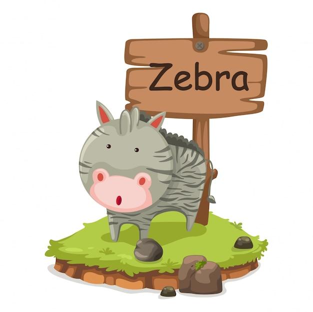 Lettre de l'alphabet des animaux z pour vector illustration zèbre
