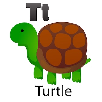 Lettre alphabet t-tortue