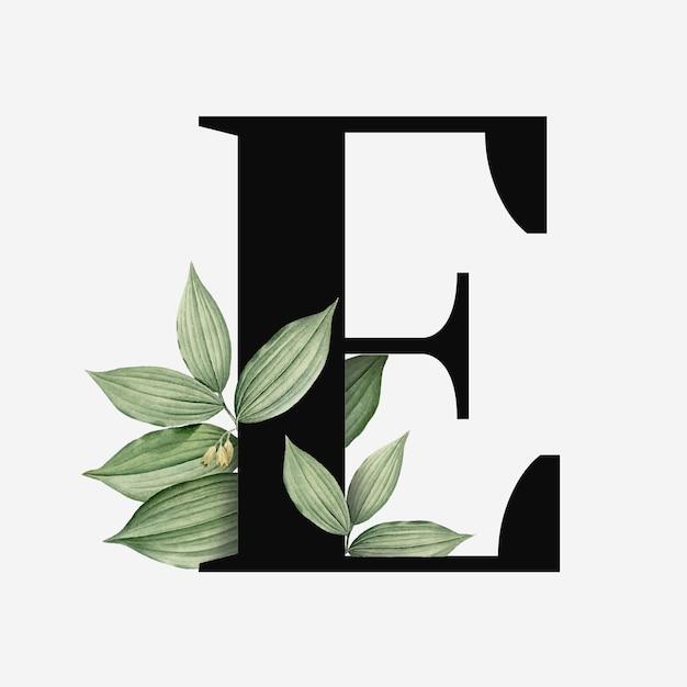 Lettre e avec des feuilles vertes