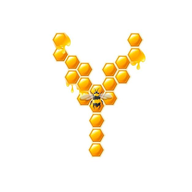Lettre en nid d'abeille y avec des gouttes de miel et illustration vectorielle plane d'abeille isolée sur fond blanc.