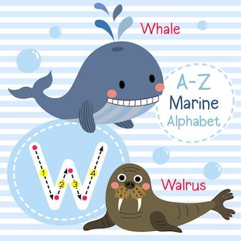 Lettre w alphabet de la mer