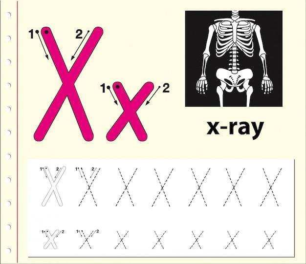 Lettre x traçant des feuilles de l'alphabet