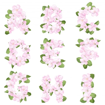 Lettres ai de l'alphabet anglais de fleur de pommier