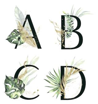 Lettres de collection de l'alphabet tropical abcd