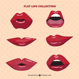 Lèvres réglées avec brillant