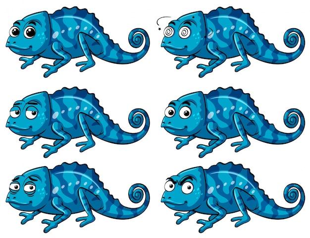 Lézard bleu avec six émotions différentes