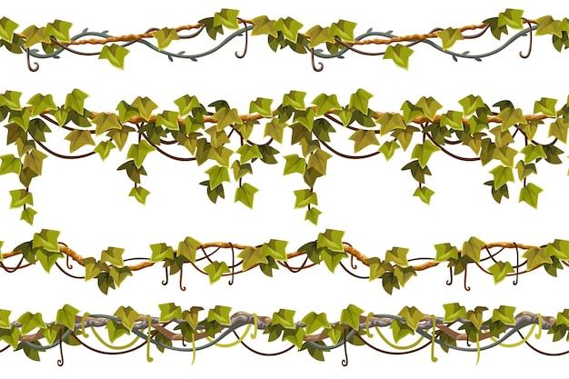 Liane branches laisse des bordures ensemble