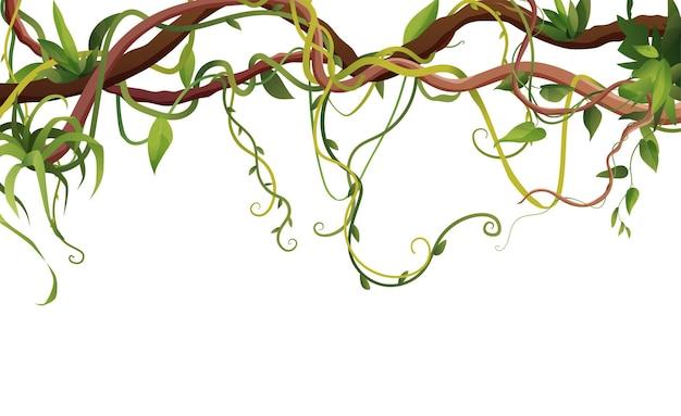 Lianes de dessin animé ou branches sinueuses de vigne sur fond blanc