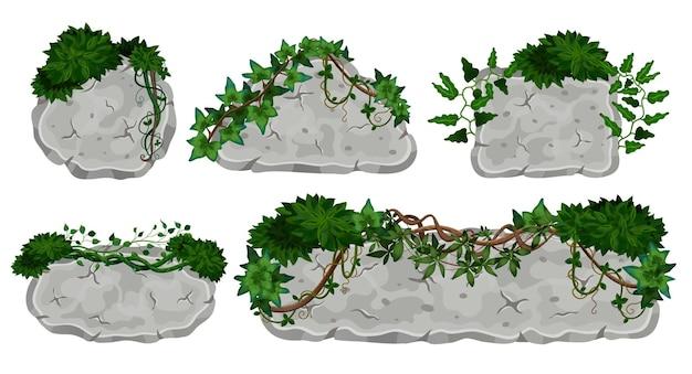Lianes tropicales couvrant des panneaux de pierre ensemble d'illustrations isolées