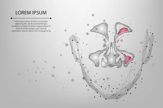 Ligne de maille abstraite et point sinusite. low poly healthy et inflammation sinus nasal