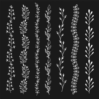 Lignes de craie transparente ornement floral. décoration dessinée à la main, jeu de frontières de croquis.