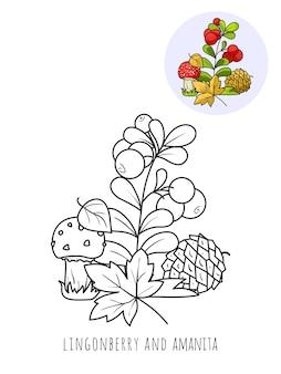 Lingonberry et champignon amanita, une image à colorier avec un échantillon de couleur.