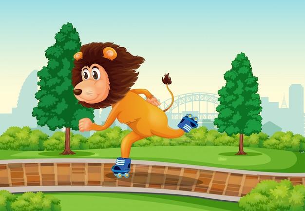 Lion jouant au roller dans le parc