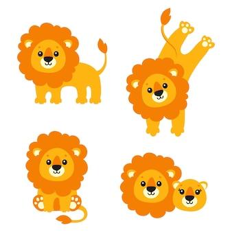 Lion mignon animal sauvage