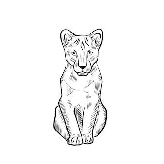 Le lionceau isolé sur fond blanc. croquis graphique kid prédateur de la savane dans le style de gravure.