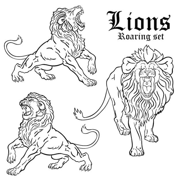 Lions rugissant ensemble