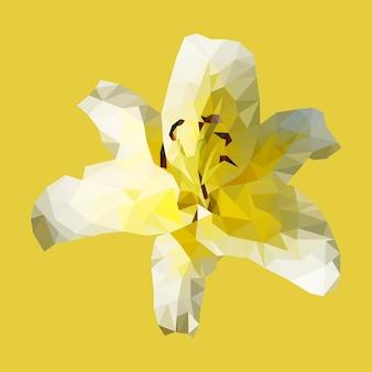 Lis jaune polygonale, fleur triangle polygone