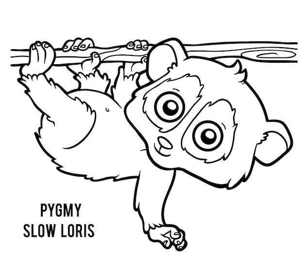 Livre de coloriage pour des enfants, loris lents pygmées