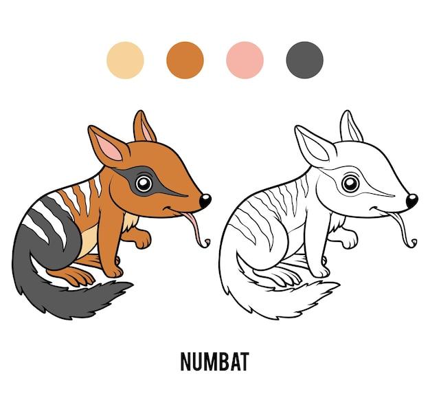 Livre de coloriage pour les enfants, numbat
