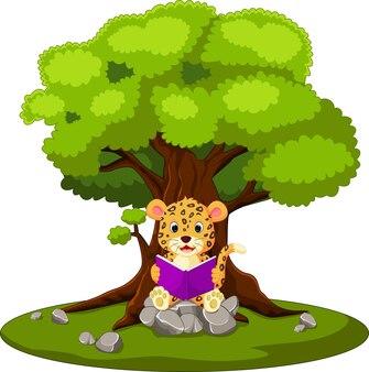 Livre de lecture léopard et assis sur la pierre