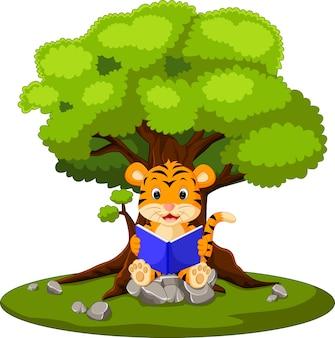 Livre de lecture de tigre et assis sur la pierre