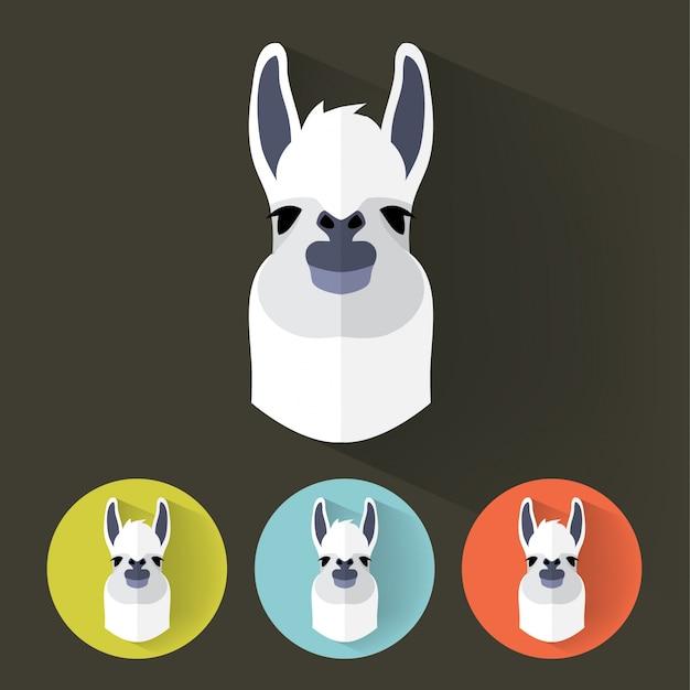 Llama flat portrait