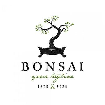 Logo de bonsaï de style rétro vintage premium