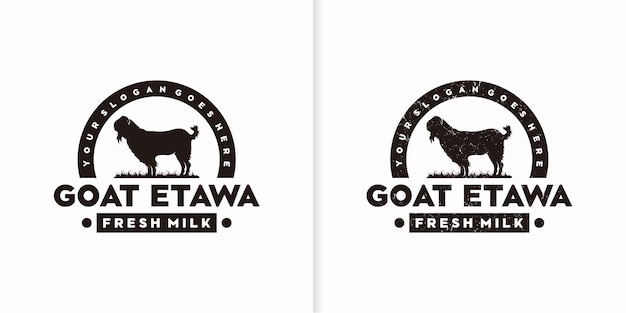 Logo de chèvre vintage, logo de chèvre laitière, logo de lait de chèvre, référence de logo de ranch