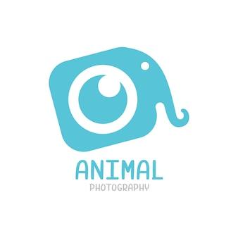 Logo d'éléphant, modèle de logo de photographie animale isolé