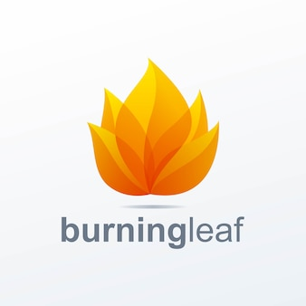 Logo de feuille brûlante
