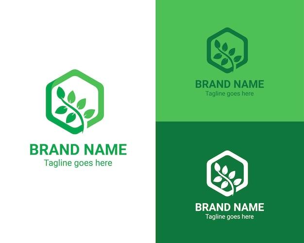 Le logo de la feuille pousse dans un hexagone