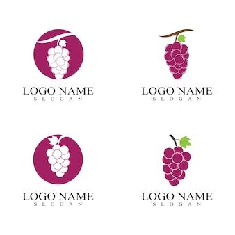 Logo de fruits de raisin et vecteur de symbole