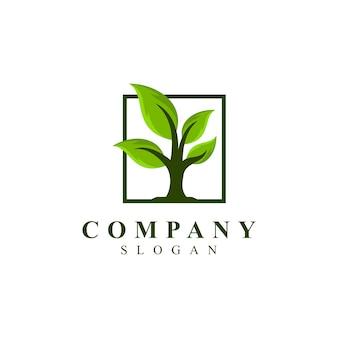 Logo de grandes feuilles