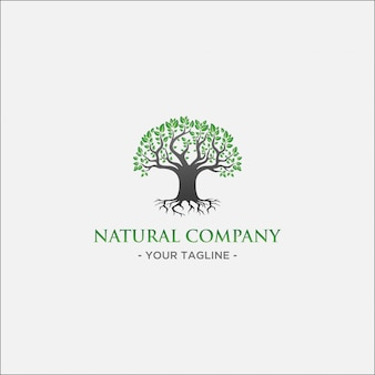Logo green tree avec feuille verte et branche noire
