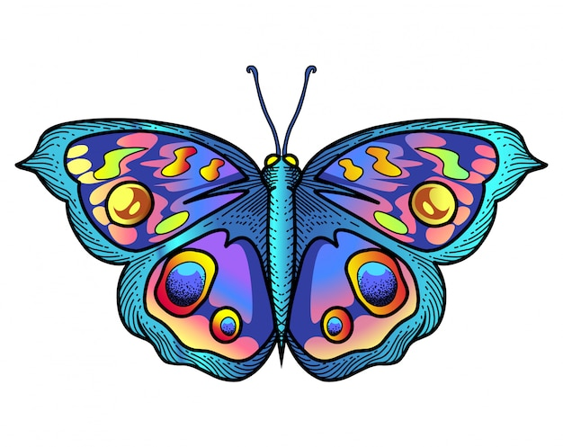 Logo mascotte papillon