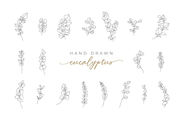 Logo de montagne monochrome vintage monoline eucalyptus dessinés à la main laisse des éléments pour l'invitation de mariage