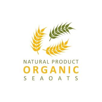 Logo de paddy de blé
