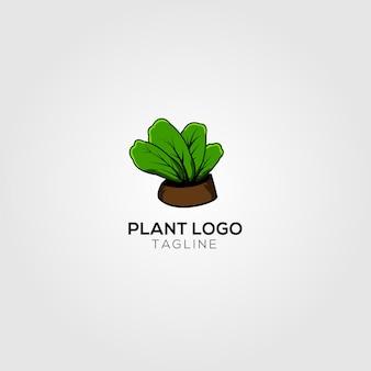 Logo de plante créative