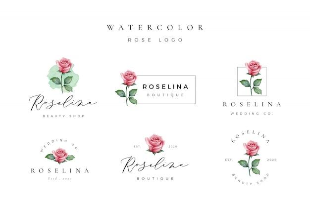 Logo rose aquarelle