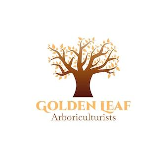 Logo de la vie de l'arbre avec des feuilles dorées