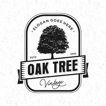 Logo vintage de chêne