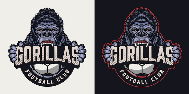 Logo vintage coloré de club de football